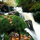 autumnal fall at Rumbling Bridge, fife, Scotland by tayforth