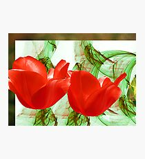 Red for Valentine's  Photographic Print