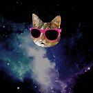 Cool Cat by UberAutomaton