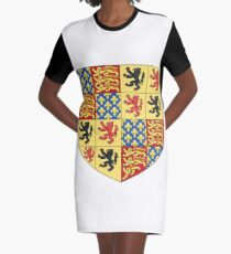 Hainault coat of arms, Coat of arms, arms, crest, blazon, cognizance, childrensfun, purim, costume Graphic T-Shirt Dress