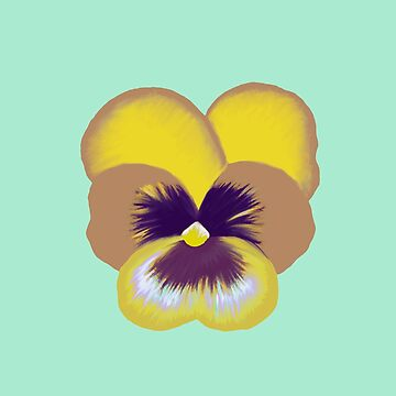Single Yellow Pansy Flower by emmafifield