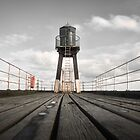 Whitby Pier by Mike Higgins