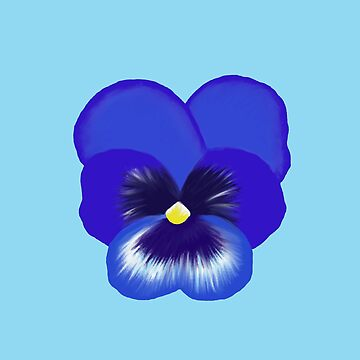 Single Blue Pansy Flower by emmafifield