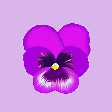 Single Purple Pansy Flower by emmafifield