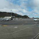 Wellington NZ by Tom McDonnell