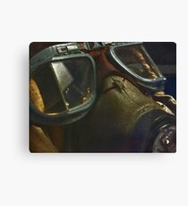 Flyin' eyes Canvas Print