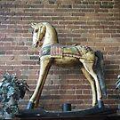 Wooden Rocking Horse by Debbi Tannock