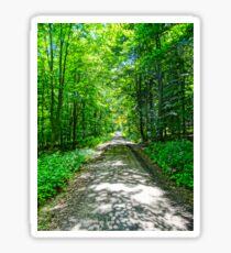 Mystical Forest Walk On Famous Goldsteig Trail Sticker