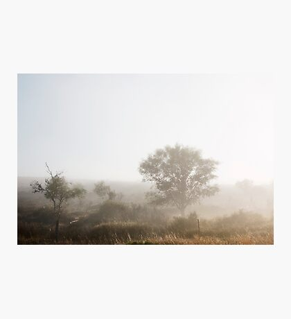 The Fog that Wouldn't Lift - Cape West Coast Photographic Print
