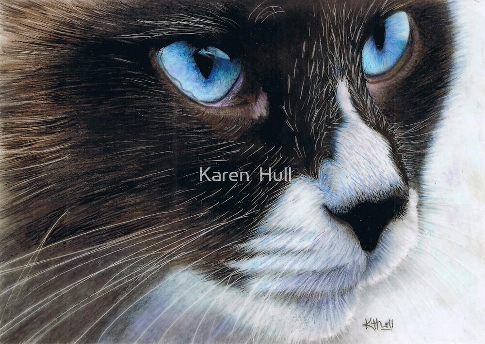 Sapphire Eyes by Karen  Hull