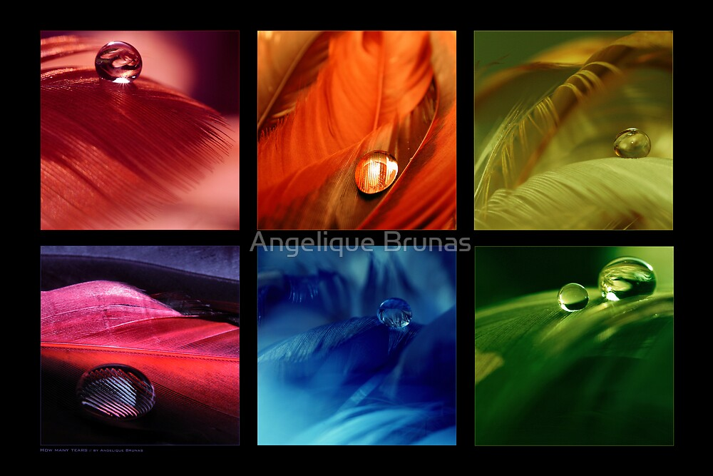 How many tears by Angelique Brunas