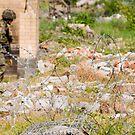 peacekeeping by tayforth