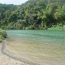 CHAVON River - Dominican Republic by Daniela Cifarelli