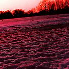Walking on a frozen lake and enjoying the sunset by jammingene