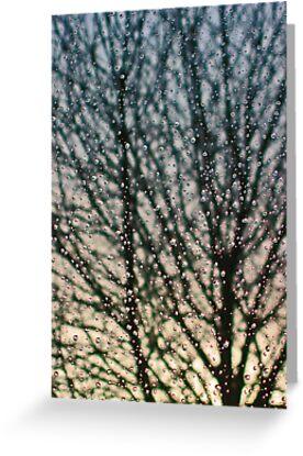 Rain by Jeanne Horak-Druiff