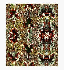 Ethnic Leaves Photographic Print