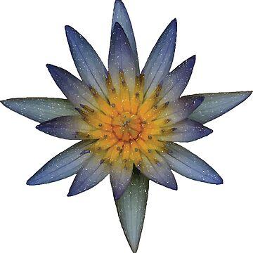Blue Flower by zeke2usher