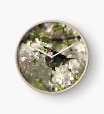 Male house sparrow and spring blossoms Clock