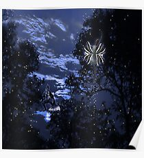 Dance Fairy and Warrior Fairy in night Poster