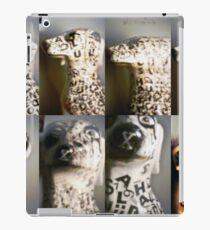 Pinhole 2.. iPad Case/Skin