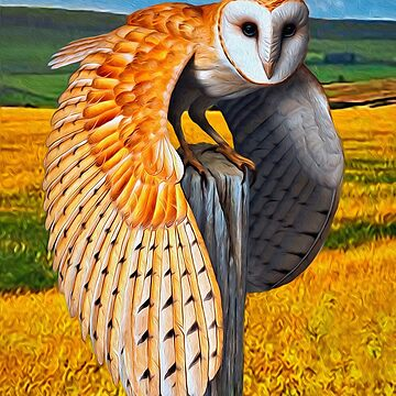 Barn Owl by Skyviper