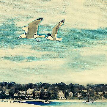 The Love of Flying by toriyule1
