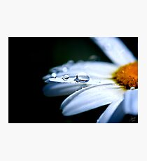 Perfect Drop Photographic Print