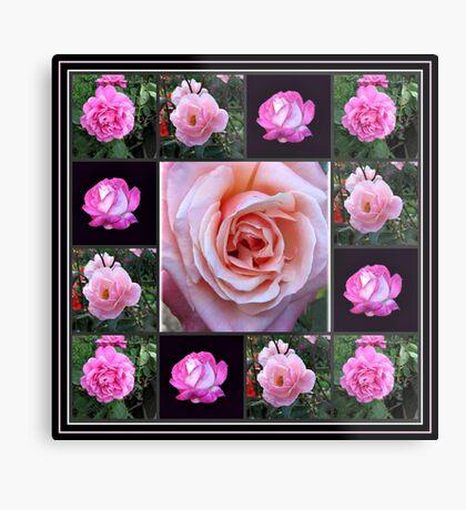 Rosa Rosen-Collage Metallbild