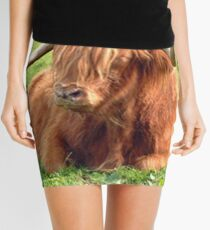 Heilan Coo Mini Skirt