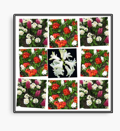 Hyacinths and Primroses Spring Collage Leinwanddruck