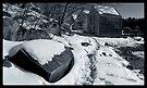 Winter Path by Dave  Higgins