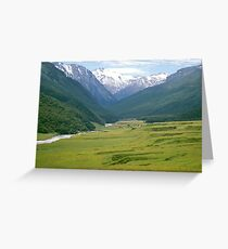 Nature Forever Greeting Card