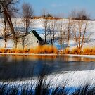 The Caddy Shack On Ice by Lois  Bryan