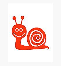 Snail face Photographic Print