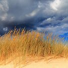 Dune Grass And Storm Clouds by robcaddy