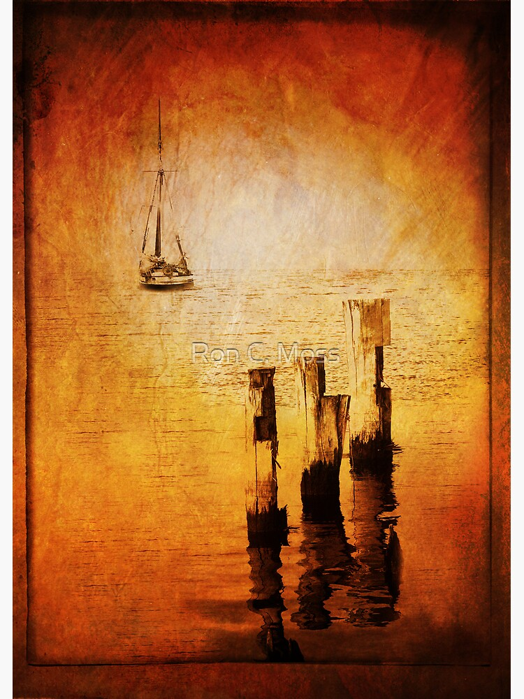 Riverboat by ronmoss