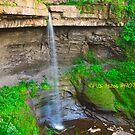 Carpenters Falls I  by PJS15204