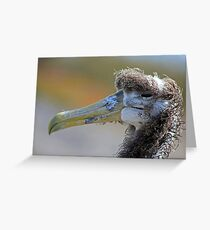 Face only a mother could love.. Greeting Card