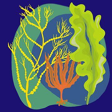 Pacific Seaweeds by Okir