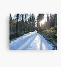 Ice Age - Forest Path Canvas Print