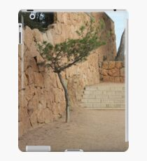 The art of Nature iPad Case/Skin