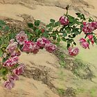 Roses Branching Out by Elaine Teague