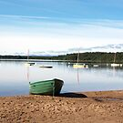 Tranquil loch with a green boat by SiobhanFraser