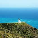 Lighthouse at Cape Reinga by SiobhanFraser