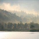 Rising Mists by Christianne Gerstner