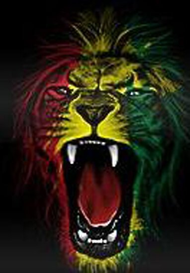 rasta lion posters by markmcg777 redbubble
