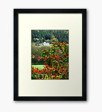Autumn in the Highlands Framed Print
