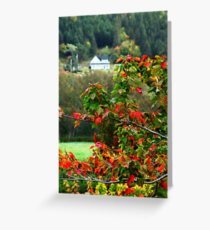 Autumn in the Highlands Greeting Card