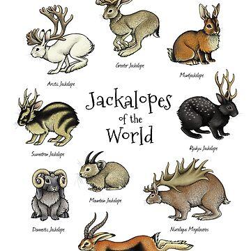 Jackalopen der Welt von lyndseygreen