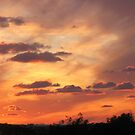 Sunset from the Mosta's Bride Garden by Rosalie M